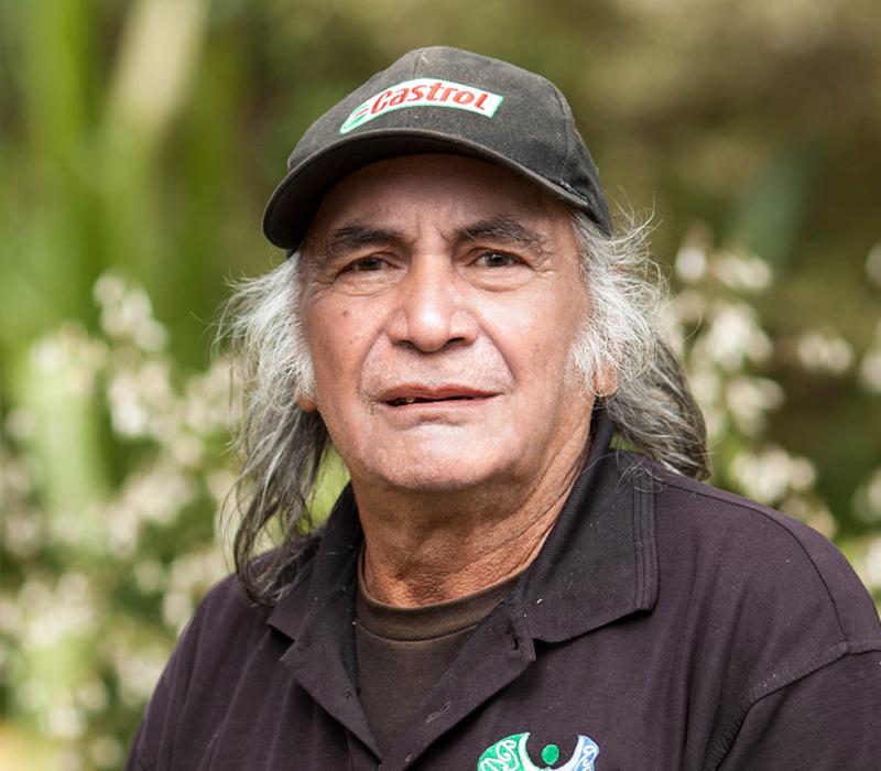 Fred Te Miha