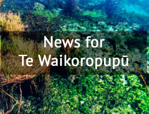 News for Te Waikoropupū Springs – April 2018