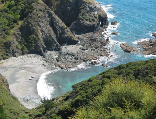 Public access to Hori Bay is closed until rain