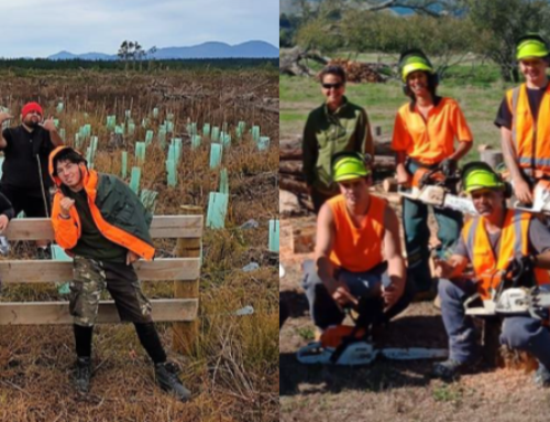 Apply: Project Moturoa  Kaitiaki Whenua Program 2020